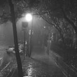 Il calise di notte
