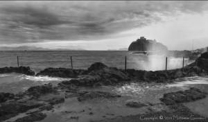 Foto di Giovanni Mattera - Cicca sulla foto per ingrandirla con un ottimo dettaglio